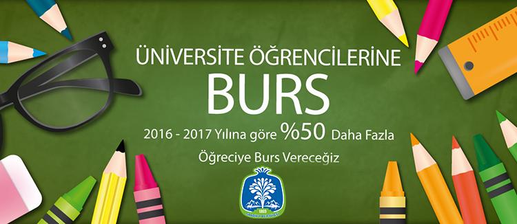 burs1